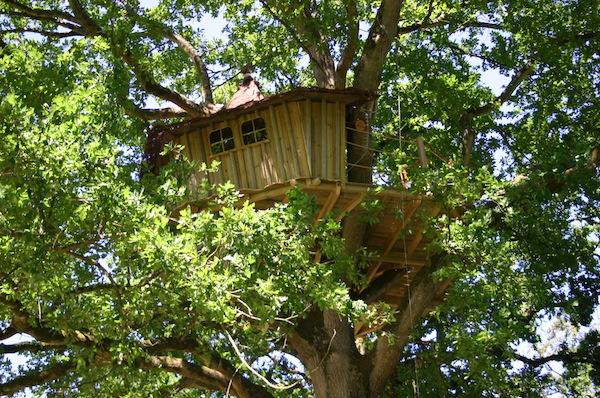 ma cabane dans les arbres environnement le monde comme. Black Bedroom Furniture Sets. Home Design Ideas